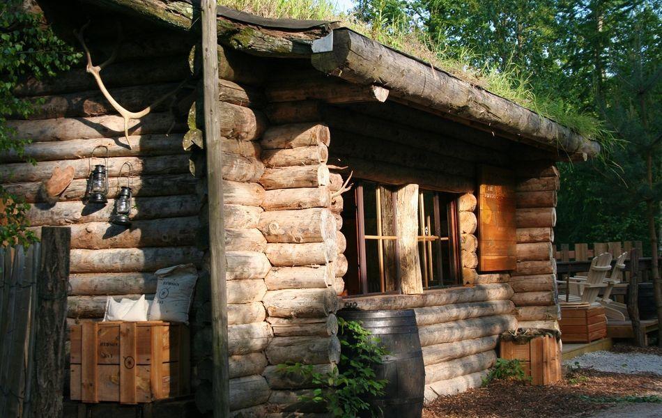 c t camping insolite passez une nuit entre cerfs et loups. Black Bedroom Furniture Sets. Home Design Ideas