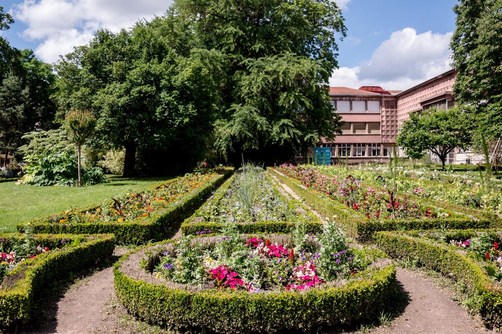 Jardin dominique alexandre godron parc et jardin for Jardin botanique nancy