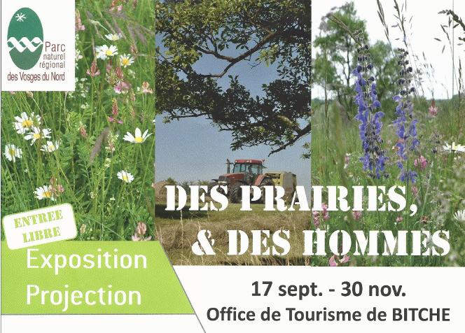 EXPOSITION / PROJECTION : DES PRAIRIES & DES HOMMES