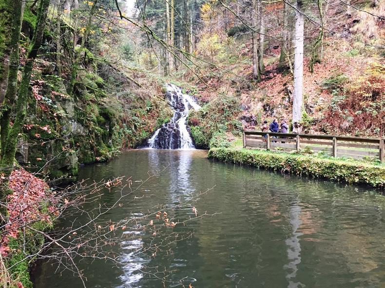 OTSI Vosges Méridionales
