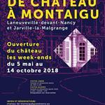 Nancy : LA VIE DE CHATEAU A MONTAIGU
