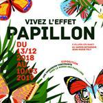 Nancy : EXPOSITION VIVEZ L'EFFET PAPILLON