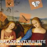 Nancy : BALADE NATURALISTE AU MUSÉE DES BEAUX-ARTS
