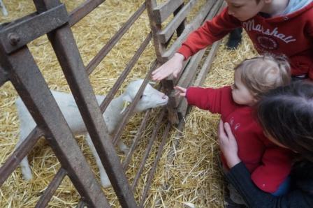 Les mercredis a la ferme