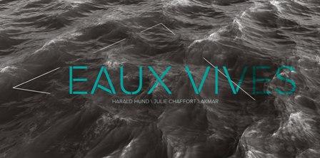 EXPOSITION-EAUX-VIVES-HARALD-HUND/-JULIE-CHAFFORT/AKMAR