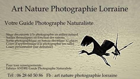 STAGES D'INITIATION A LA PHOTOGRAPHIE