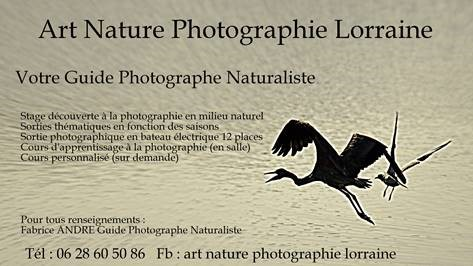 STAGES D'INITIATION ET PERFECTIONNEMENT DE PHOTOGRAPHIE