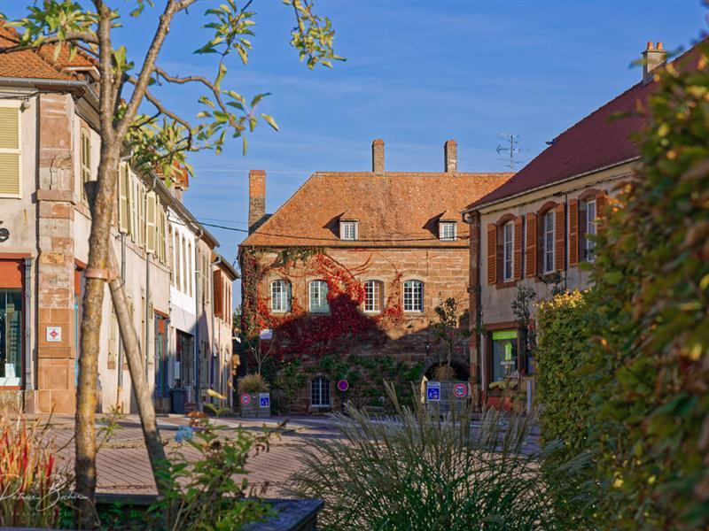 VILLE-DE-PHALSBOURG_5