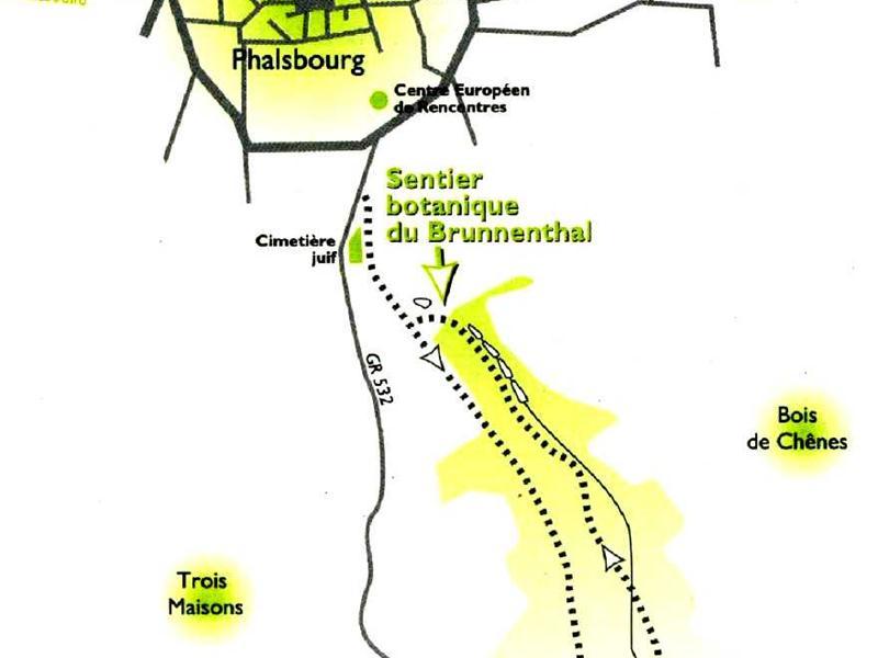 SENTIER-BOTANIQUE-DU-BRUNNENTHAL_1