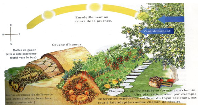 RENCONTRE : PERMACULTURE