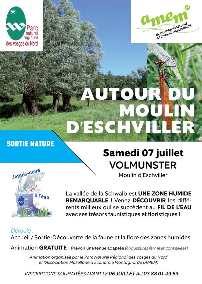 SORTIE NATURE : AUTOUR DU MOULIN D'ESCHVILLER