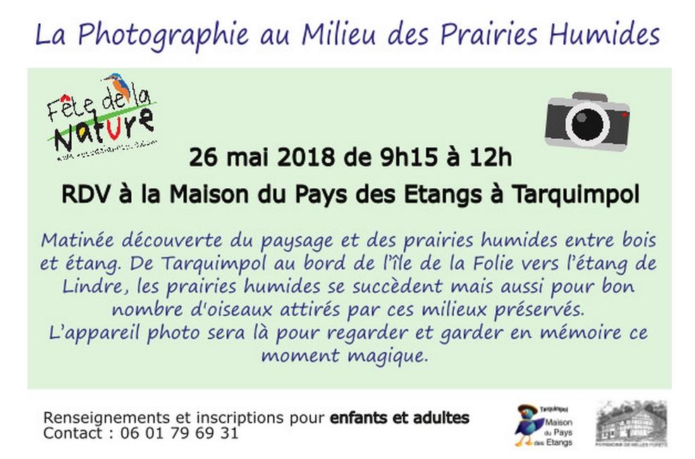 PHOTOGRAPHIE AU MILIEU DES PRAIRIES HUMIDES