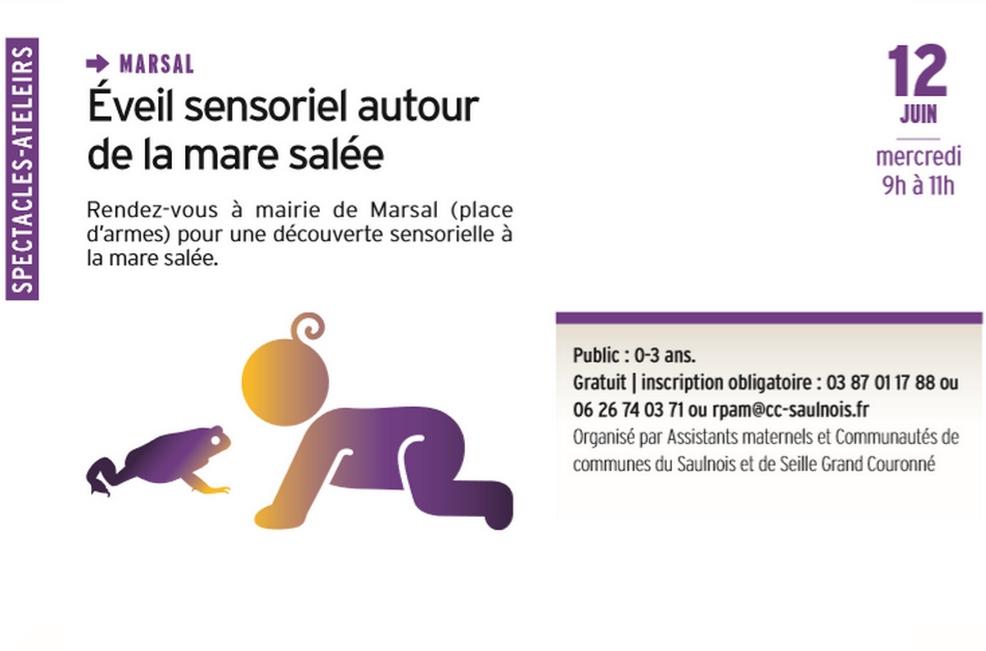 ÉVEIL SENSORIEL AUTOUR DE LA MARE SALÉE
