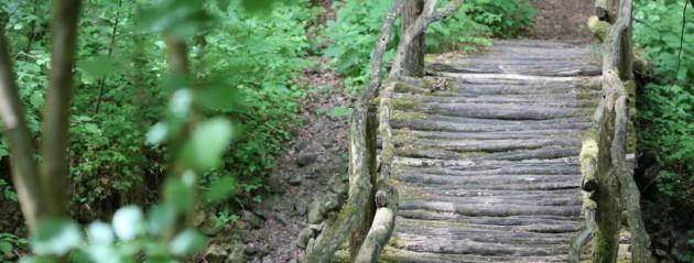 Crédit photo Réserve Naturelle de Montenach
