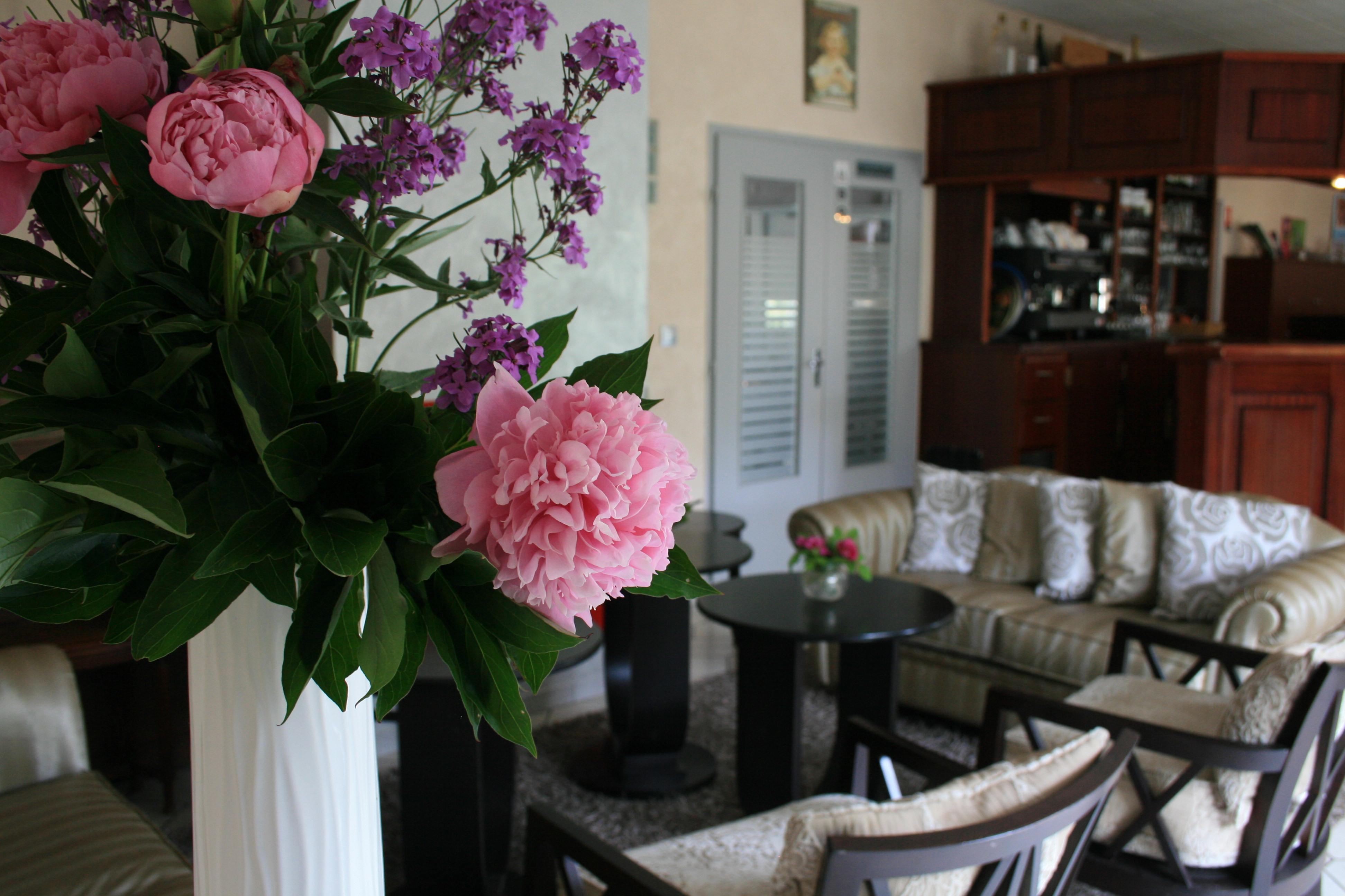hotel restaurant les orchidees cultural heritage. Black Bedroom Furniture Sets. Home Design Ideas