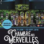 Nancy : LA CHAMBRE DES MERVEILLES - SON ET LUMIÈRE