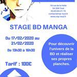Nancy : STAGE BD MANGA